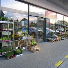 Gartencenter Selters