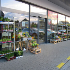 Gartencenter Selters